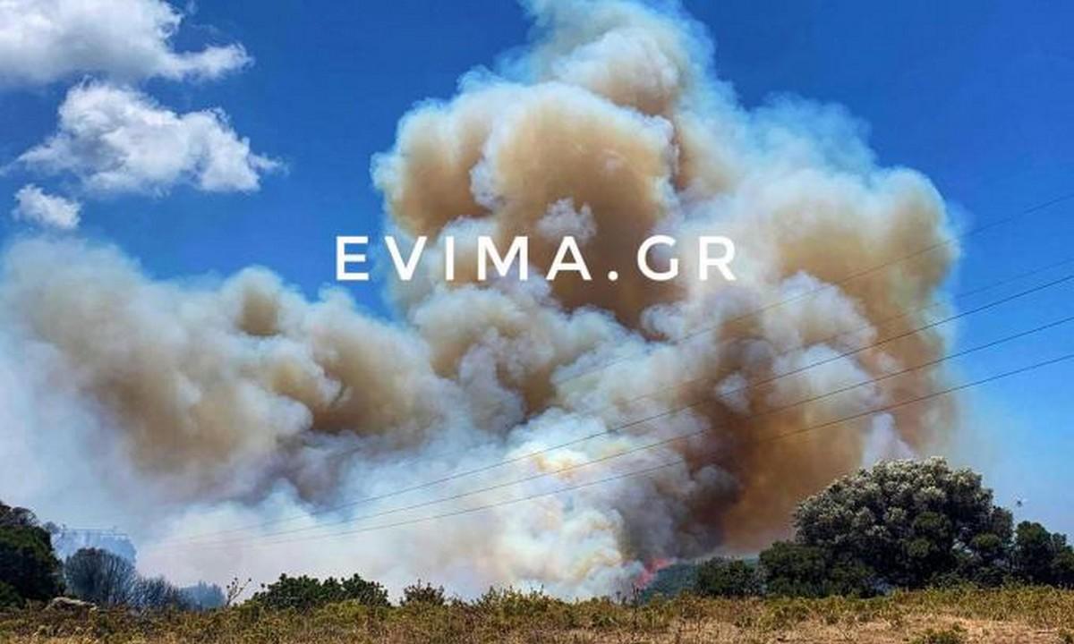 Εύβοια: Φωτιά εκτός ελέγχου στους Ραπταίους