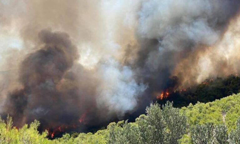 Λαύριο: Έξαλλος ο δήμαρχος με τη φωτιά – «Είναι αδιανόητο, δεν εισακουστήκαμε» (vids)