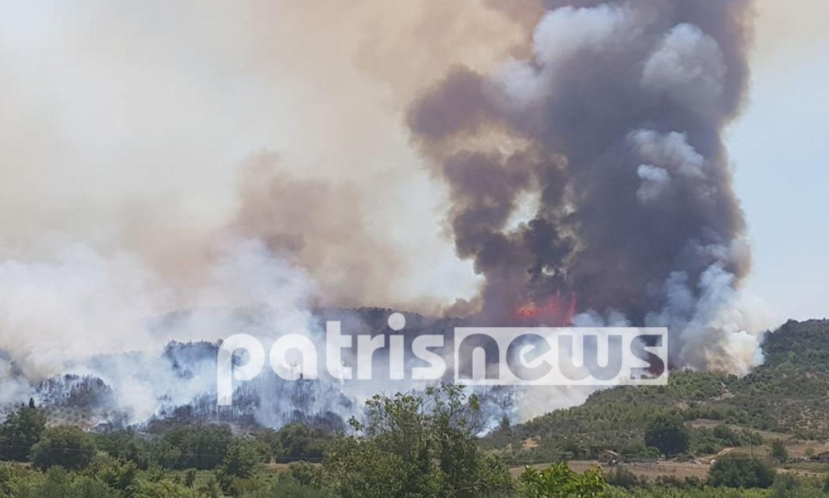 Μάχη με τις φλόγες στην Ηλεία – Προς εκκένωση χωριό