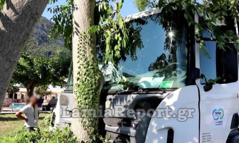 Απίθανο τροχαίο στα Καμένα Βούρλα: Σφήκα «υπεύθυνη» για καραμπόλα