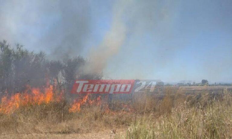 Φωτιά με διάσπαρτα μέτωπα στη δυτική Αχαΐα (vid)