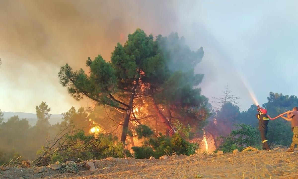 Σάπες: Εκκενώθηκαν σπίτια λόγω πυρκαγιάς – Ανοιχτό το ενδεχόμενο εμπρησμού (vids)