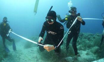 Αλόννησος: Εγκαινιάστηκε το πρώτο υποβρύχιο μουσείο της Ελλάδας (vid)