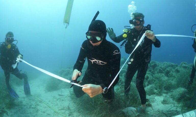 Αλόννησος: Παρουσία του Ρουβά εγκαινιάστηκε το πρώτο υποβρύχιο μουσείο της Ελλάδας (vid)