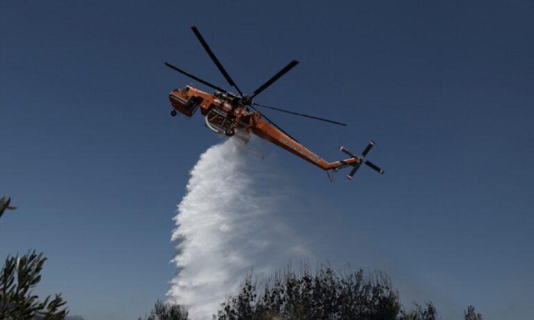 Κερατέα – Φωτιά καίει δασική έκταση: Στο σημείο ισχυρές δυνάμεις της Πυροσβεστικής