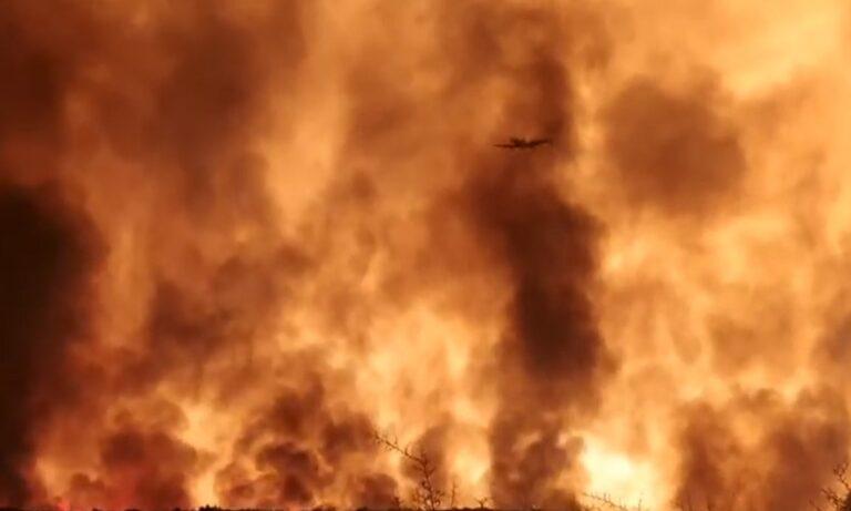 Φωτιά στη Μάνη: Διάσπαρτες οι εστίες – Δίνει «μάχη» η Πυροσβεστική