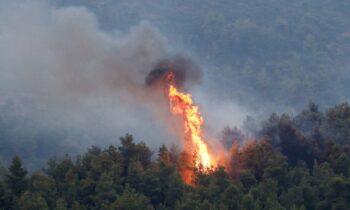 Χανιά: Φωτιά στην περιοχή Κανδάνου