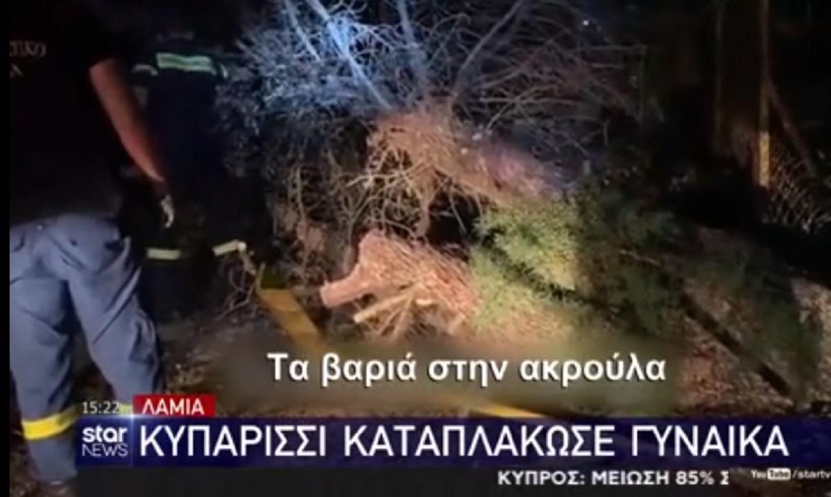 Λαμία: Κυπαρίσσι καταπλάκωσε 57χρονη (vid)