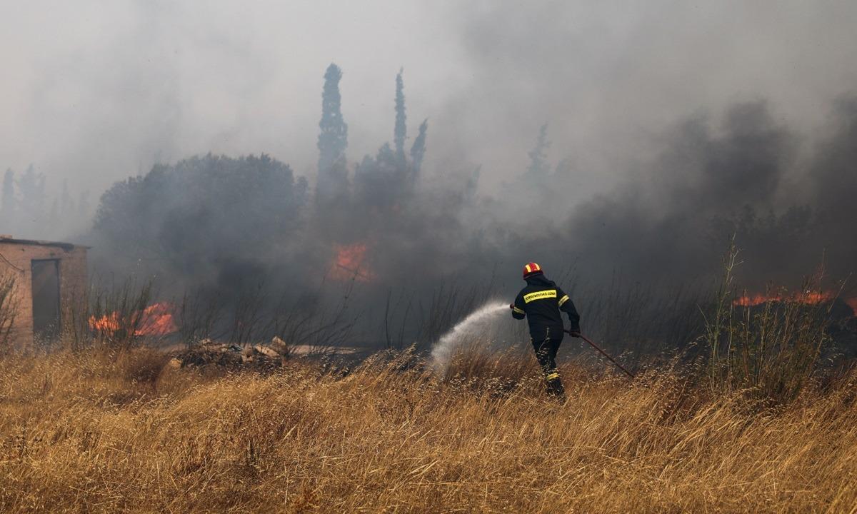 Δήμαρχος Σαρωνικού: Οι οκτώ περιοχές που ζητά να εκκενωθούν – Κάηκαν σπίτια στην Ανάβυσσο (vid)