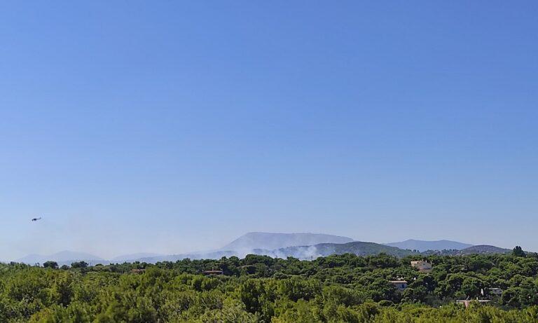 Ραφήνα – Φωτιά: Προληπτική απομάκρυνση των κατοίκων του Οικισμού «Δροσιάς»