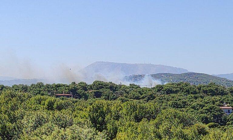Ραφήνα: Μεγάλη φωτιά στην Αρίωνος προς Αρτέμιδα (pic)