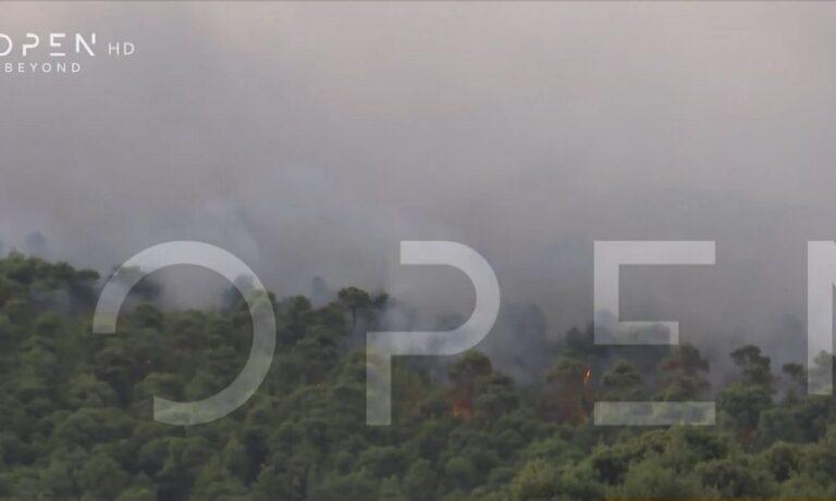 Φωτιά στο Σοφικό: Καλύτερη πλέον η εικόνα (vids)