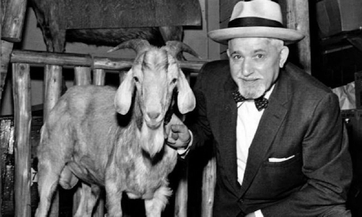 The Chicago Cubs' billy goat curse, explained