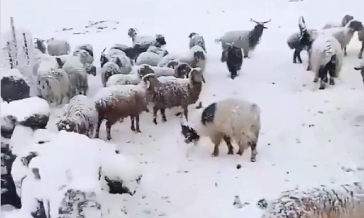 Nαγκόρνο Καραμπάχ: Ξεκίνησε να χιονίζει – Έρχεται ο βαρύς χειμώνας