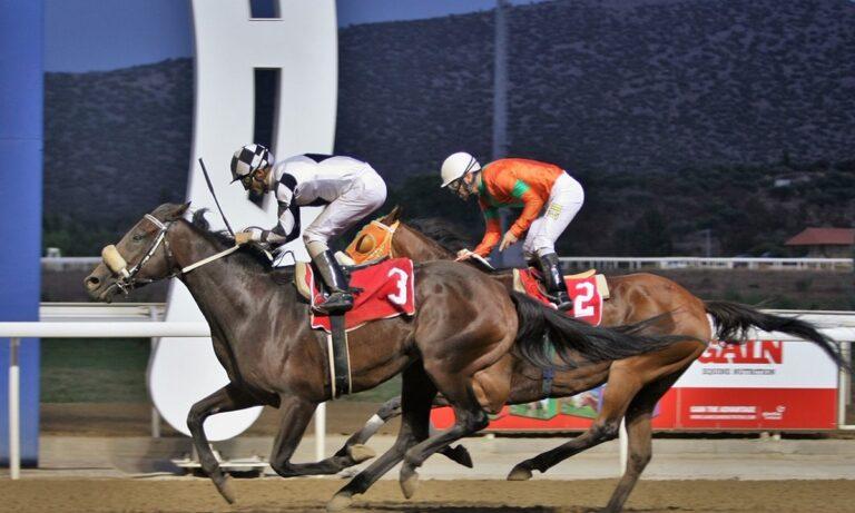 Σημαντικά κέρδη για 14 νικητές σε ΣΚΟΡ 6 και ΤΕΤΡΑΠΛΟ των ελληνικών ιπποδρομιών
