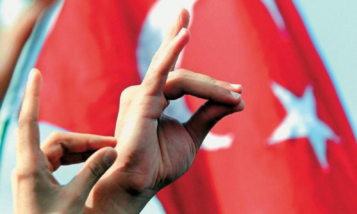Τούρκοι Γκρίζοι Λύκοι τρομοκρατούν γαλλική πόλη – «Τραμπουκίζουν» Αρμένιους και Γάλλους