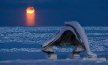 «Αποχαιρέτησαν» τον ήλιο για το 2020 σε πόλη της Αλάσκας