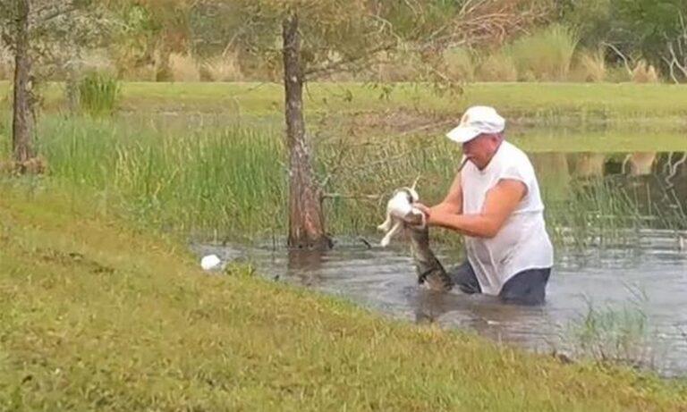 VIRAL: Άνδρας παλεύει με αλιγάτορα για να σώσει το σκυλάκι του (vid)