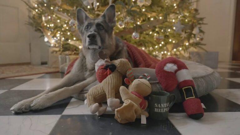 Viral: Τα σκυλιά του Μπάιντεν έκλεψαν την παράσταση με τις ευχές τους