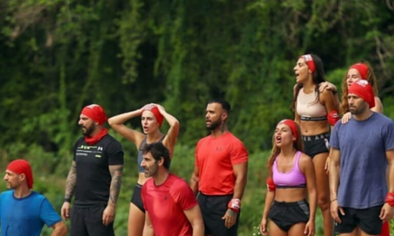 Survivor highlights 29/12