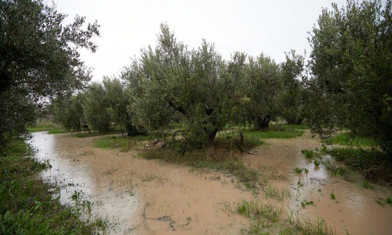 Σέρρες – Χαλκιδική: «Βούλιαξαν» λόγω ισχυρής βροχόπτωσης – Ποιοι δρόμοι είναι κλειστοί