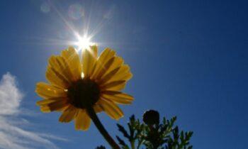 Καιρός (Κυριακή 6/6): Καλό καιρό θα έχουμε την Κυριακή 6 Ιουνίου 2021, καθώς εκτός από κάποιες τοπικές νεφώσεις θα έχουμε ηλιοφάνεια και άνοδο της θερμοκρασίας.