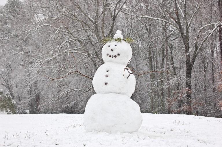 Το έστρωσε : Πως να φτιάξεις τον τέλειο χιονάνθρωπο