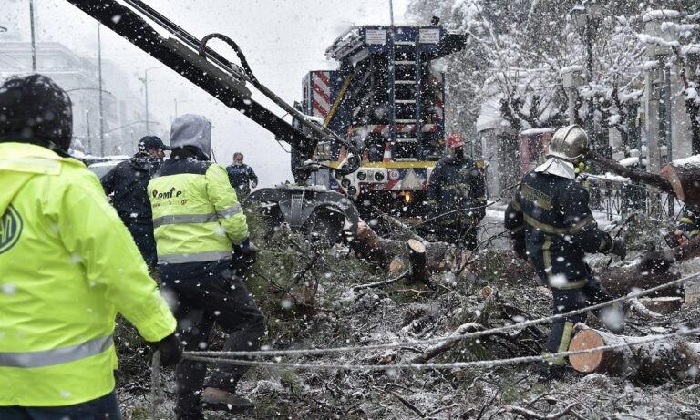 Μήδεια: Φωτιά σε μετασχηματιστή της ΔΕΗ, πάνω από 250.000 νοικοκυριά χωρίς ρεύμα