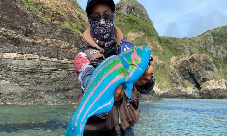 Viral: Απίστευτο ψάρι με τα πιο φανταχτερά χρώματα (vids)