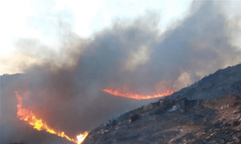 Φωτιά στην Άνδρο: Προληπτικά εκκενώθηκαν περιοχές!