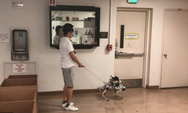 Tα σκυλιά οδηγοί τυφλών θα μπορούσαν σύντομα να αντικατασταθούν από ρομπότ. Οι επιστήμονες αναπτύσσουν τετράποδα, που μπορούν να οδηγήσουν τους τυφλούς γύρω από εμπόδια και μέσα από στενά περάσματα.