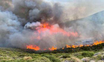 Φωτιά στην Άνδρο: Σε ύφεση το πύρινο μέτωπο - Επιχειρούν ξανά εναέρια μέσα (vid)