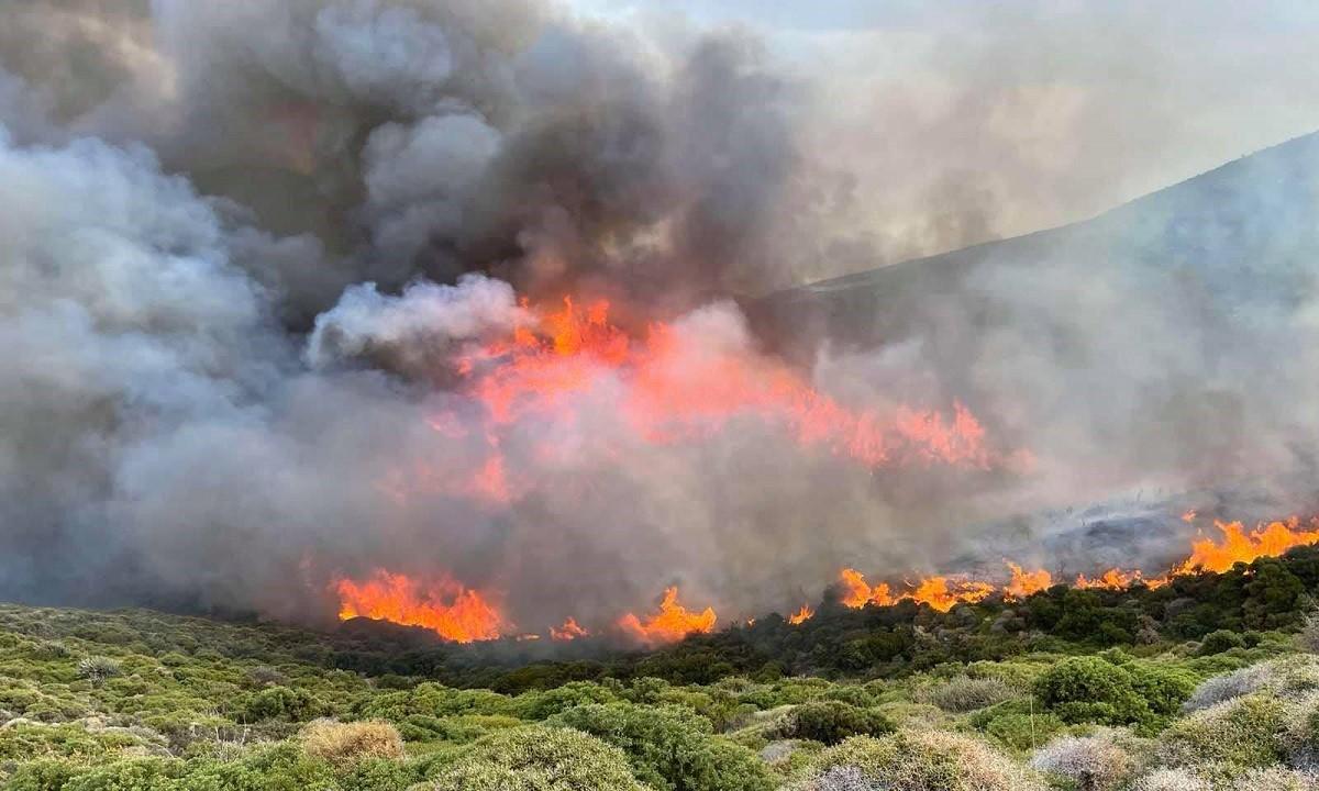 Φωτιά στην Άνδρο: Σε ύφεση το πύρινο μέτωπο  – Επιχειρούν ξανά εναέρια μέσα (vid)
