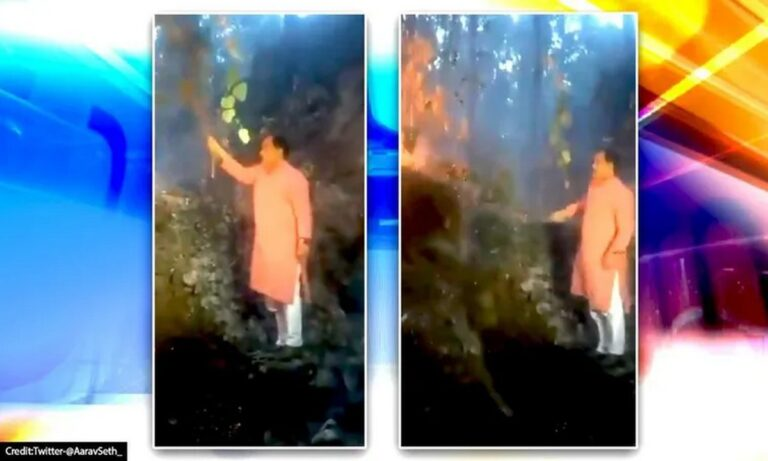 VIRAL: Υπουργός στην Ινδία επιχειρεί να σβήσει φωτιά με θάμνο (vid)