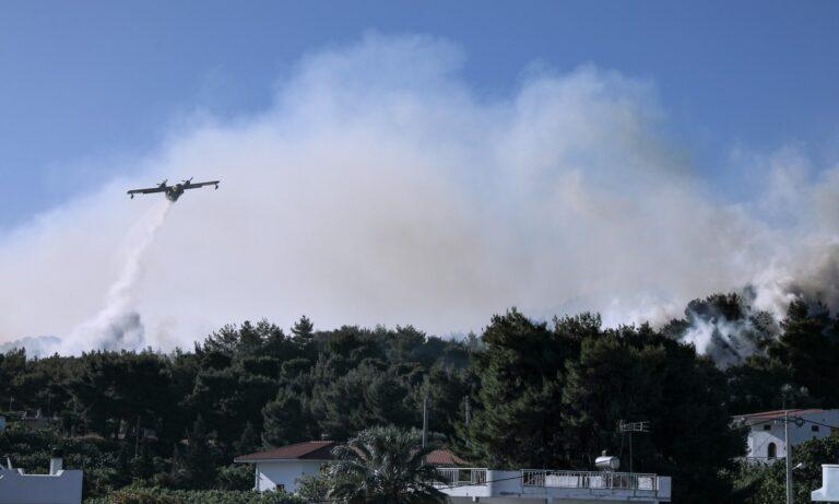 Παπαγιαννέικα: Αυτήν την ώρα καταγράφεται αναζωπύρωση της πυρκαγιάς και μεγάλη κινητοποίηση από την Πυροσβεστική στον οικισμό.