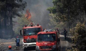 Φωτιά Σχίνος: Το απόγευμα οι κάτοικοι του Αλεποχωρίου έλαβαν εντολή να εγκαταλείψουν τις εστίες τους, αφού η πυρκαγιά έχει επεκταθεί.