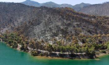 «Κρανίου» τόπο θυμίζουν πλέον τουλάχιστον 70.000 στρέμματα άλλοτε παρθένου δάσους στα Γεράνεια Όρη τα οποία προ ολίγων ημερών έγιναν στάχτη.