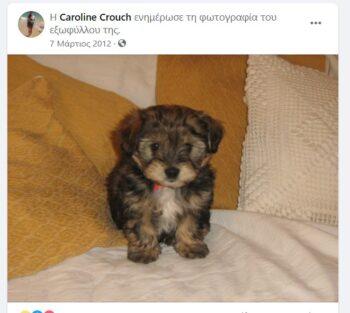 Έγκλημα στα Γλυκά Νερά: Αυτό είναι το σκυλάκι που έπνιξε ο Μπάμπης (pics)