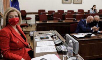 Κλαρίνα και «Ιτιά – ιτιά» ακούστηκαν σε συνεδρίαση επιτροπής της Βουλής. «Να θυμηθούμε τη δημοτική μας παράδοση...» είπε η πρόεδρος της Επιτροπής.