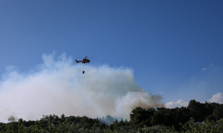 Φωτιά στα Μέγαρα: Συναγερμός στην Πυροσβεστική - Καίει δασική έκταση