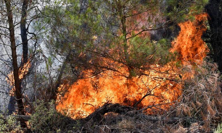 Φωτιά: Πολύ υψηλός κίνδυνος την Πέμπτη (29/7) γι' αυτές τις περιοχές
