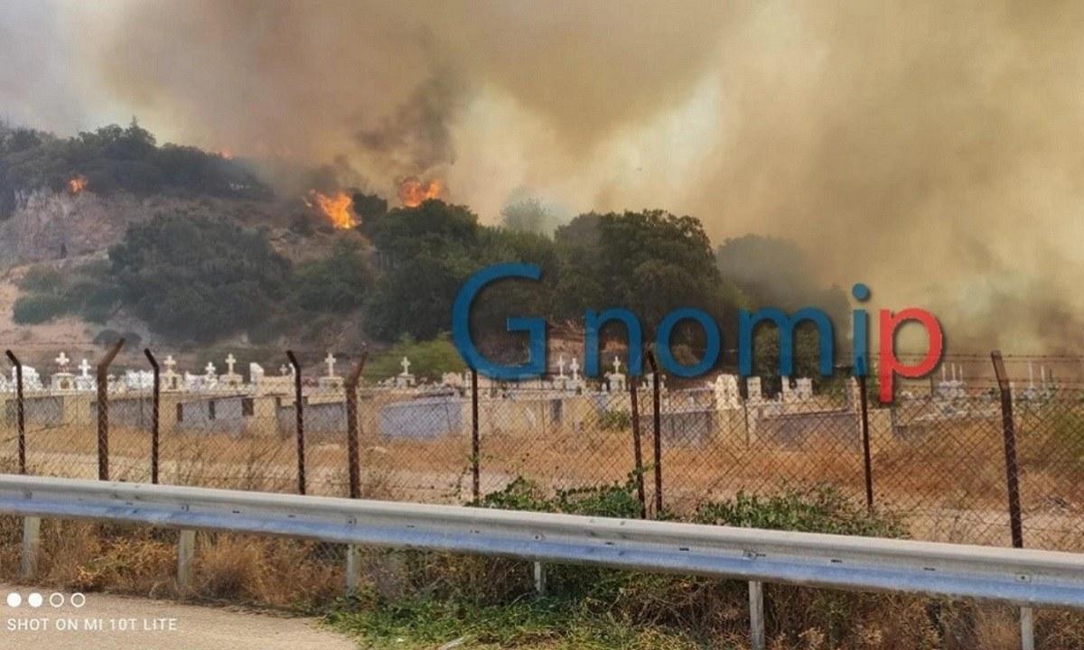 Φωτιά στο Σούλι: «Τον πο@στ@ που βγήκε» - Η στιγμή που αστυνομικοί απομακρύνουν πολίτες από τα σπίτια τους (vid)