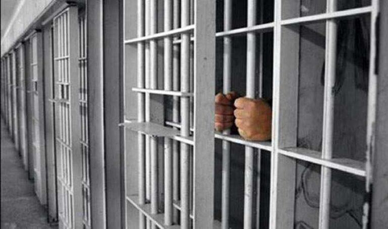 Επιτέλους: Στη φυλακή άνδρας που σκότωσε γάτα στην Πάτρα
