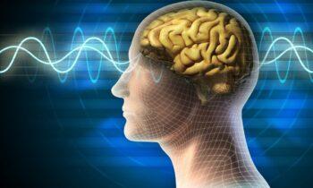 22 Ιουλίου: Παγκόσμια Ημέρα Εγκεφάλου