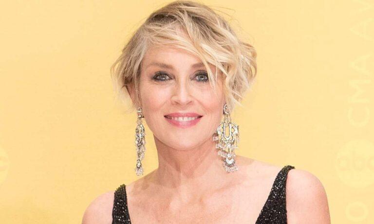 Σάρον Στόουν: Στα 63 της σήμερα αποτελεί ένα από τα πιο διάσημα πρόσωπα στη showbiz, έπειτα από 40 χρόνια καριέρας.