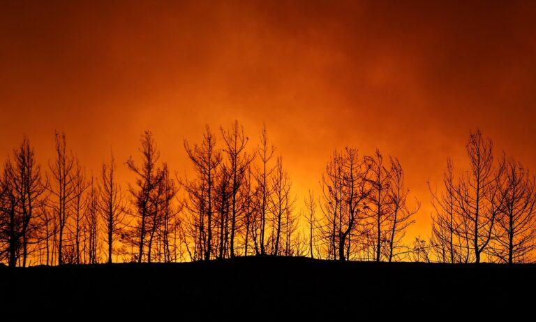 Τουρκία: Ερευνούν για σαμποτάζ πίσω από τις πυρκαγιές