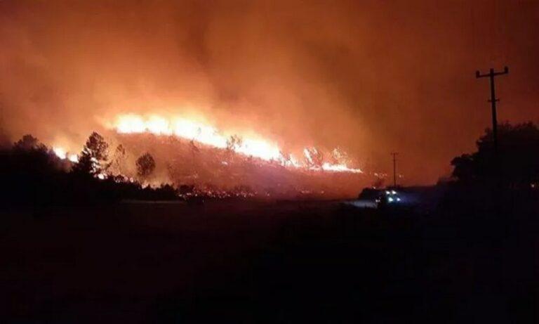 Toυρκία: Απελπίστηκαν από τις φωτιές οι Τούρκοι και σήκωσαν Bayraktar για να τις ελέγξουν