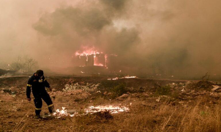 Ο Πρόεδρος Πανελλήνιας Ένωσης Δασοφυλάκων ξεσπά: «Ανίκανοι που βλέπουν τη φωτιά να κάνει βόλτες» – «Να σταματήσουν οι άσχετοι να συντονίζουν»