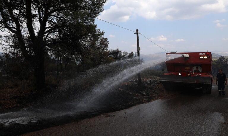 Φωτιά Βίλια: Σε ύφεση η πυρκαγιά, δεν κινδυνεύουν οικισμοί – Φόβος για το Νότιο «μέτωπο»