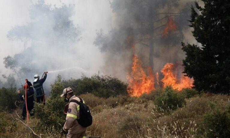 Φωτιές: Μεγάλος κίνδυνος πυρκαγιάς στη μισή Ελλάδα για σήμερα Τετάρτη 18/8